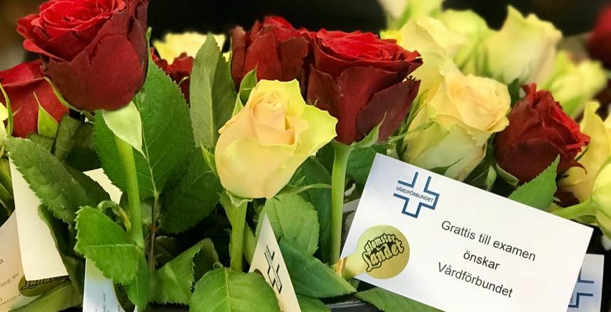 grattis till sjuksköterskeexamen Grattis till examen!   Vårdförbundet grattis till sjuksköterskeexamen